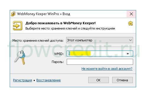 Как взять онлайн займ Вебмани WebMoney